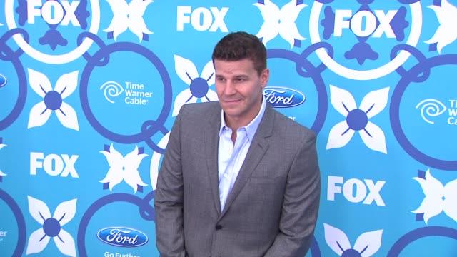 David Boreanaz at 2013 Fox Fall EcoCasino Party on 9/9/2013 in Santa Monica CA