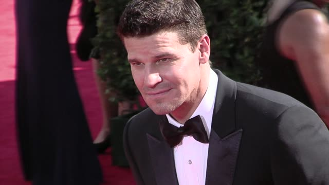 David Boreanaz at the 61st Annual Primetime Emmy Awards Arrivals Part 3 at Los Angeles CA