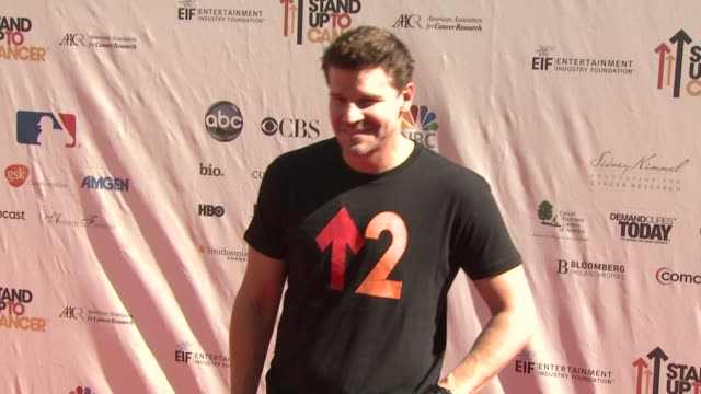 David Boreanaz at the Stand Up To Cancer at Los Angeles CA