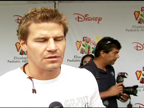 David Boreanaz on being at the event on how and why he got involved with and supports the Foundation what makes the 'Time For Heroes' carnival...