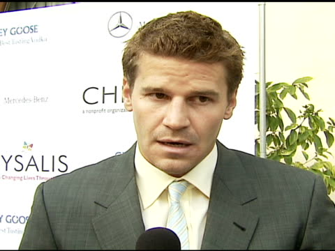 """David Boreanaz on the foundation how he heard about it his first job what's happening next season on """"Bones"""" at the Chrysalis' Fifth Annual Butterfly..."""