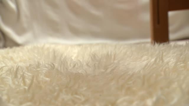 david cameron accused of debauchery in book by lord ashcroft london int ashtray with marijuana leaf design lighter with marijuana leaf design being... - 被告人点の映像素材/bロール