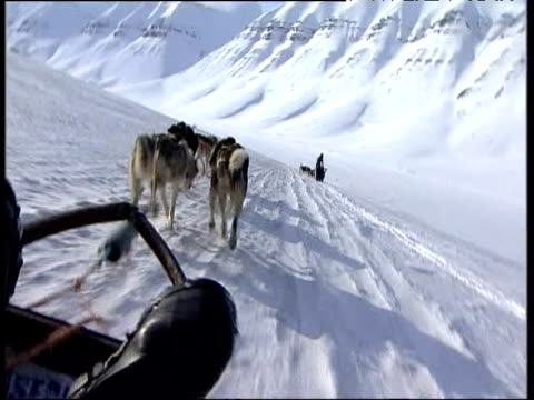 david cameron conservative party leader rides dog sledge on visit to arctic circle to highlight environmental issues norway 21 apr 06 - 動物を使うスポーツ点の映像素材/bロール