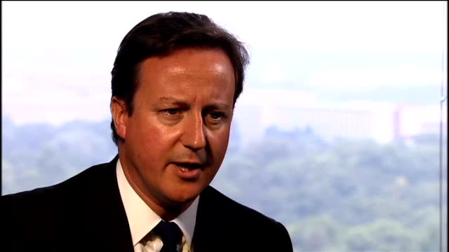 david cameron defends his criticism of pakistan new delhi david cameron mp interview sot [asked if he regrets his words] no not at all i'm not... - クリケットバット点の映像素材/bロール