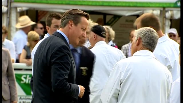 david cameron, liz truss and stephen crabb visit royal welsh show; wide shot cameron and truss chatting to people / cameron looking at sheep and... - sheep shearing stock videos & royalty-free footage