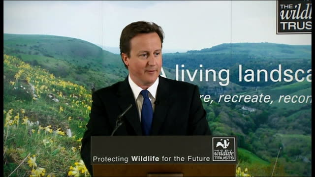 vídeos y material grabado en eventos de stock de david cameron nature reserve visit and biodiversity speech david cameron speech continued sot values and vision of any conservative government/... - biodiversidad