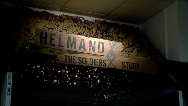 david cameron tours national army museum england london national army museum ext entrance doors to museum exhibit title 'helmand the soldiers' story'... - letter x stock videos & royalty-free footage