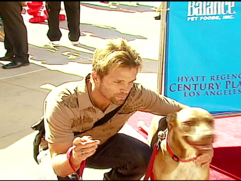 david chokachi at the dine with your dog day at the hyatt regency century plaza in century city, california on october 19, 2006. - hyatt regency stock videos & royalty-free footage