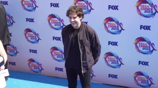 david dobrik at the teen choice 2019 on august 11 2019 in hermosa beach california - annual teen choice awards stock videos & royalty-free footage