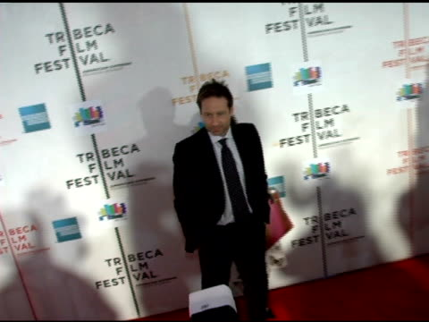 vídeos de stock, filmes e b-roll de david duchovny and judy greer at the 2006 tribeca film festival 'the tv set' premiere at tribeca performing arts center in new york new york on april... - judy greer