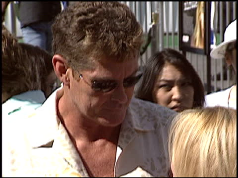 david hasselhoff at the 'new york minute' premiere at grauman's chinese theatre in hollywood, california on may 1, 2004. - david hasselhoff stock videos & royalty-free footage