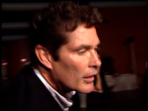 david hasselhoff at the 'original sin' premiere at dga theater in los angeles california on july 31 2001 - dga theater stock videos & royalty-free footage