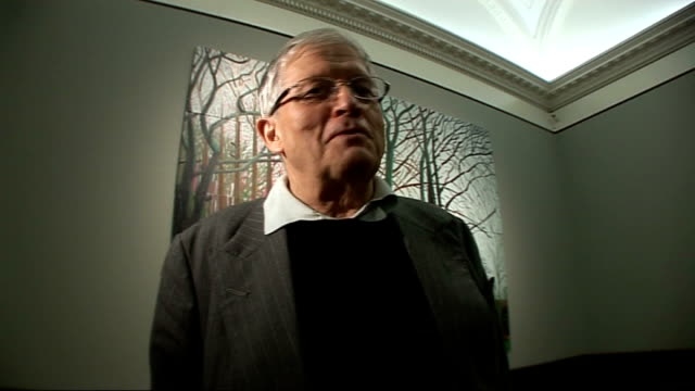 david hockney donates painting to tate britain gallery david hockney interview sot saying he is claustrophobic attracted to big spaces - claustrophobia stock videos & royalty-free footage