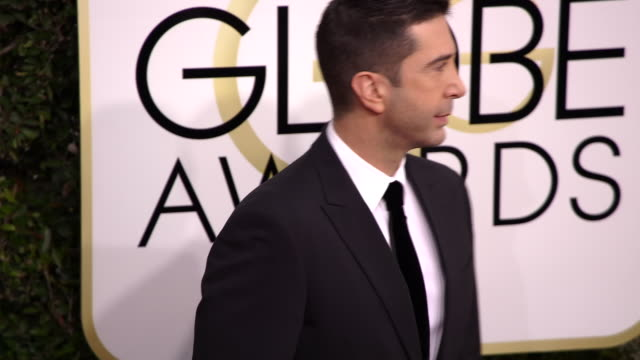 david schwimmer at the 74th annual golden globe awards arrivals at the beverly hilton hotel on january 08 2017 in beverly hills california 4k - ビバリーヒルトンホテル点の映像素材/bロール