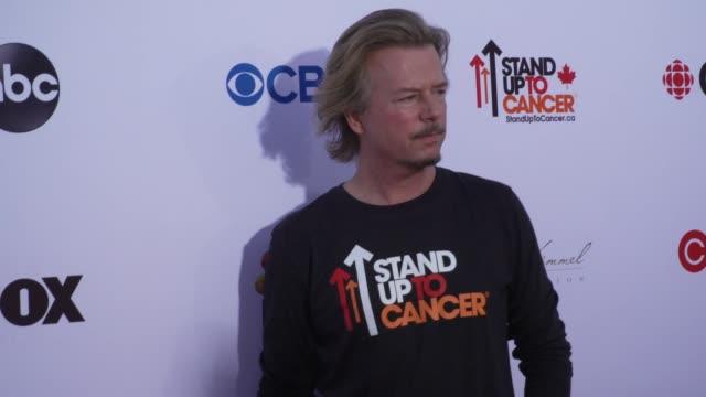 david spade at the stand up to cancer 2018 at barker hangar on september 07, 2018 in santa monica, california. - デビッド スペード点の映像素材/bロール