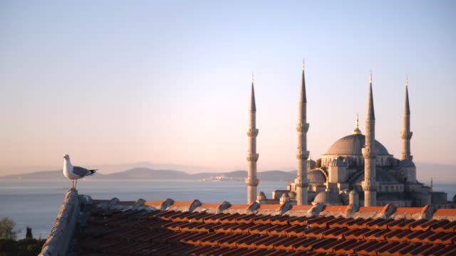 dawn and sunset view of hagia sophia mosque in istanbul, turkey - turkey stock videos and b-roll footage