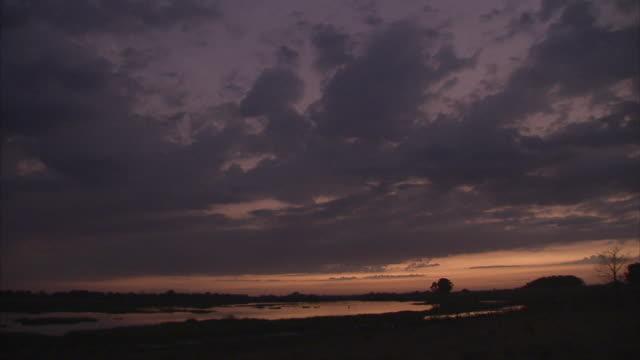vídeos de stock e filmes b-roll de ws pan dawn at los llanos plains / venezuela - planície
