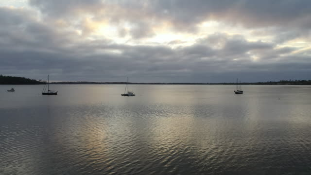 dawn at moulting bay of st helens of tasmania, australia - grey colour stock videos & royalty-free footage