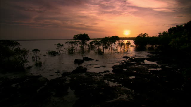 Dawn breaks over the coastline of the the Northern Territory of Australia.