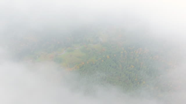 Dawn in autumn. Aerial View. Flying over the forest trees and river