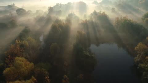stockvideo's en b-roll-footage met dawn in de ochtend. luchtfoto drone schoot. - autumn