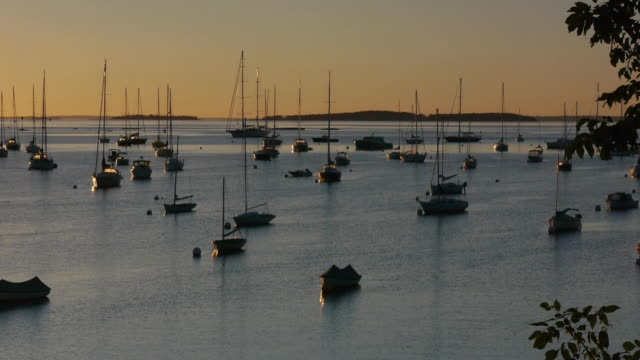 PAN Dawn, many sailboats in Camden, Maine harbor, orange sky, blue water