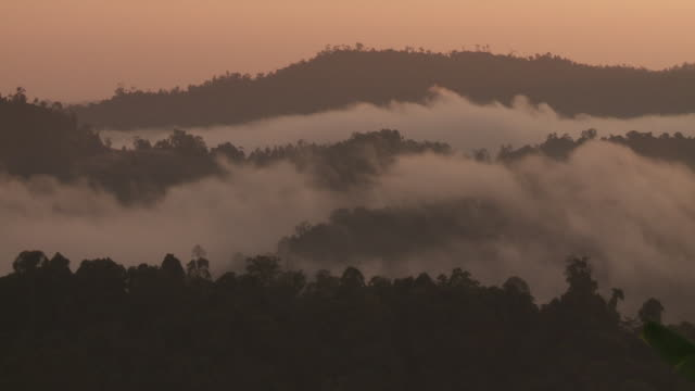 Dawn misty clouds over tropical rainforest in Borneo