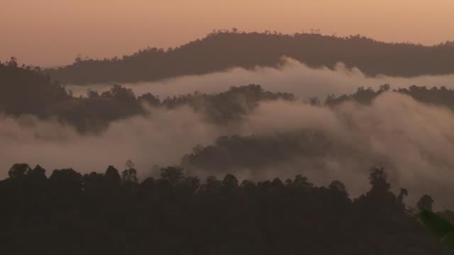 dawn misty clouds over tropical rainforest in borneo - ボルネオ島点の映像素材/bロール