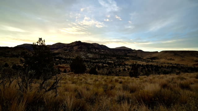 dawn mountain in the desert western juniper sage brush near john day fossil beds sutton mountain - セージブラッシュ点の映像素材/bロール