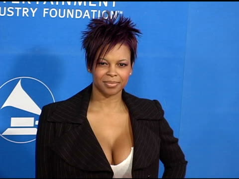 dawn robinson at the grammy jam celebrating the music of earth wind and fire at the wiltern theater in los angeles california on december 11 2004 - wiltern theater stock videos and b-roll footage