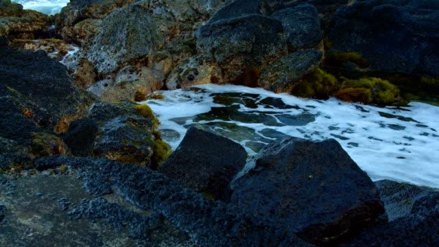 dawn waves tidepool forming  kauai hawaii - gezeitentümpel stock-videos und b-roll-filmmaterial