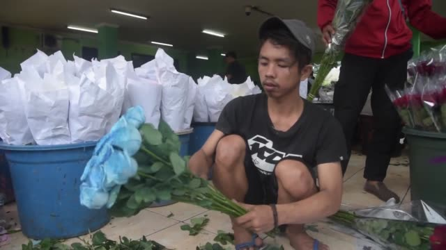 vidéos et rushes de a day before valentine's on february 13 flower vendors in rawa belong market in west jakarta get ready to bring more of their best blooms this is one... - vendeur ambulant