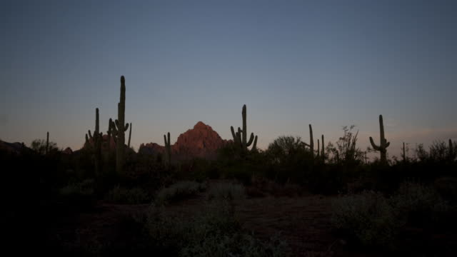 Day breaks over the Sonoran Desert. Available in HD.
