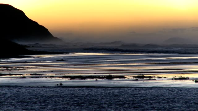 day breaks with waves pounding shoreline - water bird stock videos & royalty-free footage