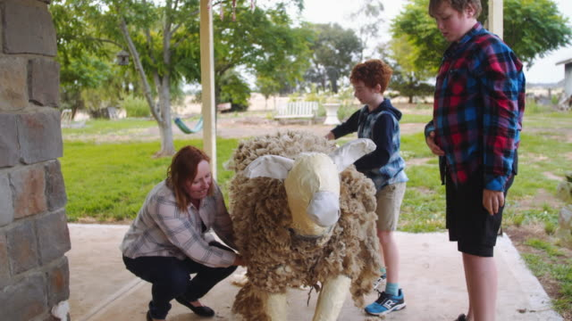 A day in the life of a farming family: kids and mum having fun