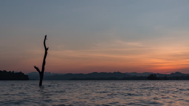 day to night time lapse of tranquil lake with tree stump and tropical mountains background at sunset - day to night stock videos & royalty-free footage