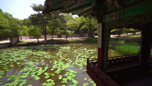 day view of aeryeonjeong gazebo and aeryeonji pond in backyard of changdeok palace (unesco world heritage site in seoul) in summer - unesco welterbestätte stock-videos und b-roll-filmmaterial