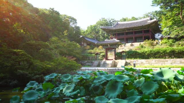 vídeos de stock, filmes e b-roll de day view of buyongji pond and juhapnu garden in backyard of changdeok palace (unesco world heritage site in seoul) in summer - patrimônio mundial da unesco