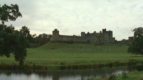 day wide angle view of alnwick medieval castle; birds scatter - northern ireland stock videos & royalty-free footage