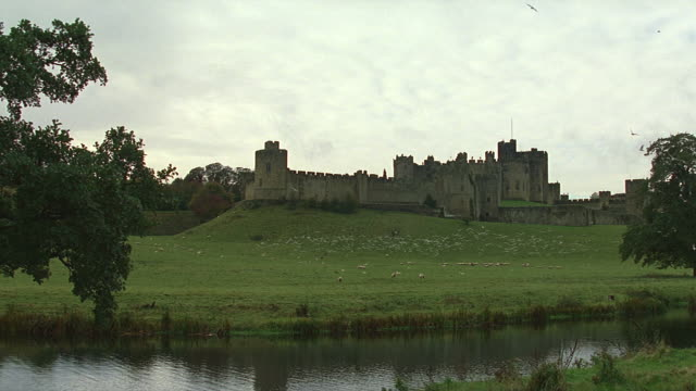 day wide angle view of alnwick medieval castle; birds scatter - 北アイルランド点の映像素材/bロール