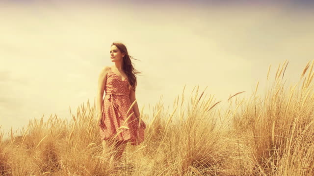 daydreaming and walking through the long grass. sm. - loneliness video stock e b–roll