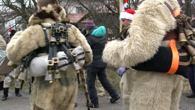vidéos et rushes de daytime kukeri  performers  wearing bear fur suits dancing and jumping to the rhythm of bells and drums - dancing bear