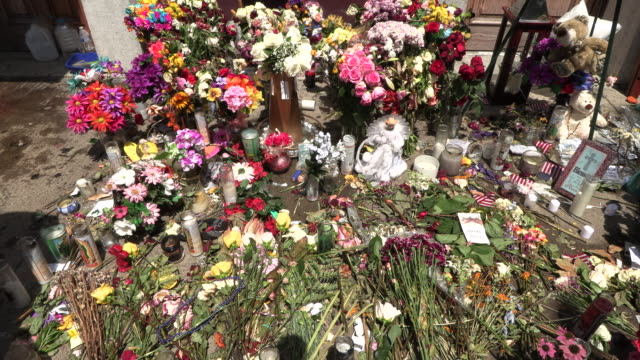 stockvideo's en b-roll-footage met flowers cover a memorial site on 5th street at the site of sunday morning's mass shooting that left 9 dead and 27 wounded wednesday august 7 2019 in... - wapen apparatuur
