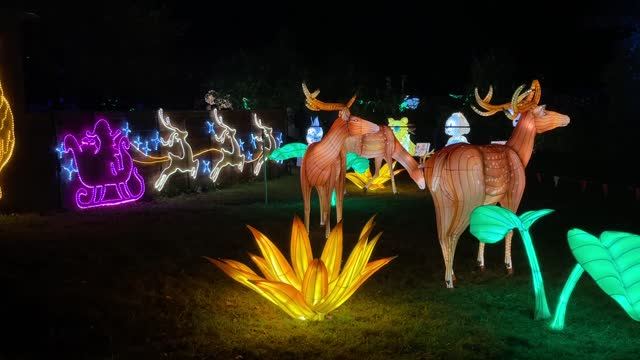 dazzling light festival has been held at roer's zoofari in the us state of virginia. starting on friday , the luminocity festival offers its visitors... - virginia us state stock videos & royalty-free footage