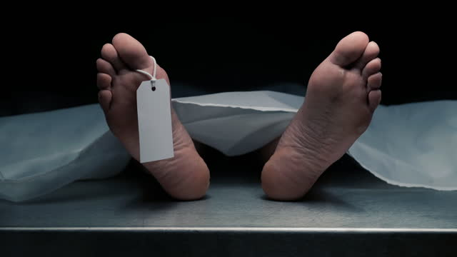 dead body in morgue - death stock videos & royalty-free footage