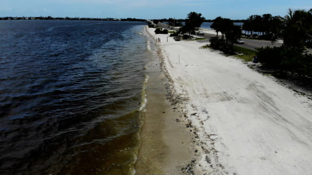 dead fish line the shoreline along the sanibel causeway after dying in a red tide on august 1 2018 in sanibel florida red tide season usually lasts... - red tide stock videos & royalty-free footage