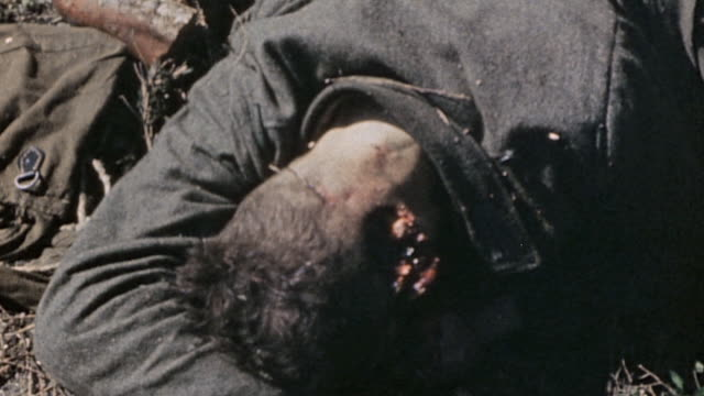 vidéos et rushes de dead german army soldiers in field / czech republic - wehrmacht