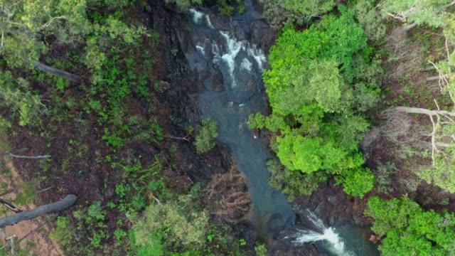 stockvideo's en b-roll-footage met dead horse creek - eco tourism