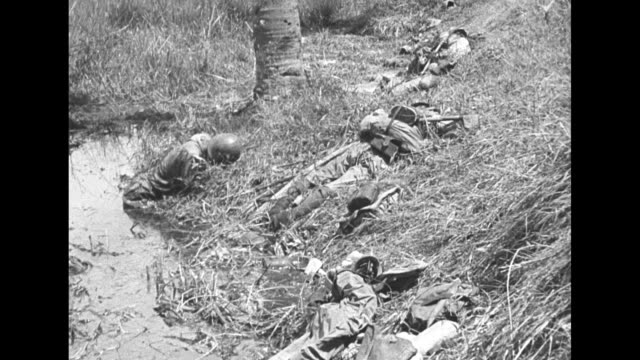 Dead Japanese bodies on Leyte Island during World War II / Note exact day not known