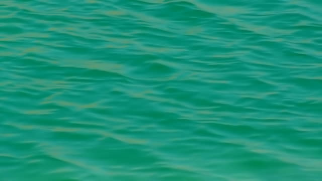 dead sea - turquoise clear water background - dead sea stock videos and b-roll footage